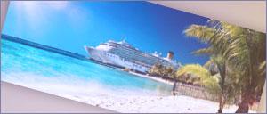 Telefono Gratuito MSC Cruceros